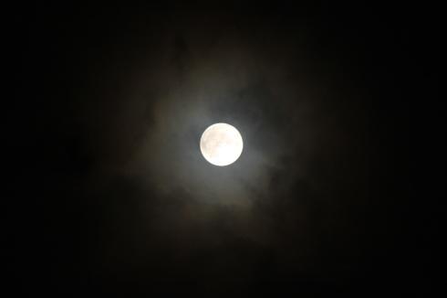 9/22 仲秋の満月_e0185893_07485105.jpg