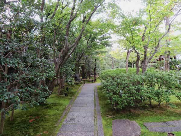 高台寺と圓徳院_c0404426_14115745.jpg