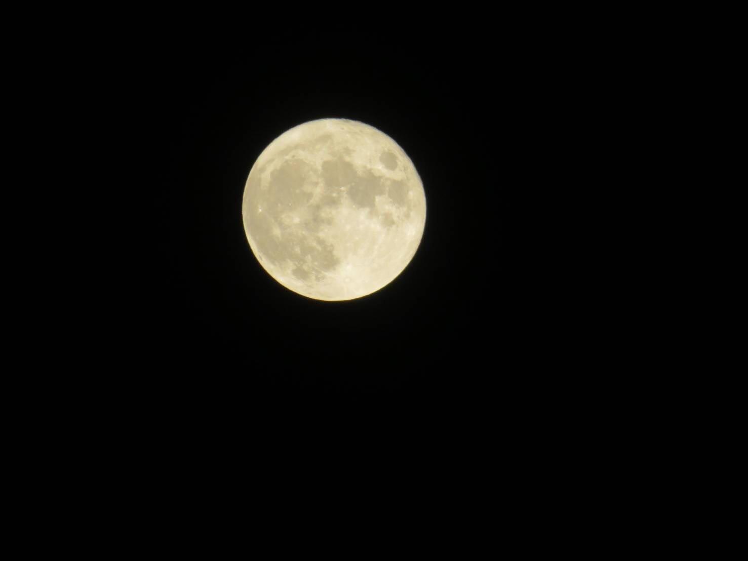 十五夜お月さん_d0079830_15200602.jpg