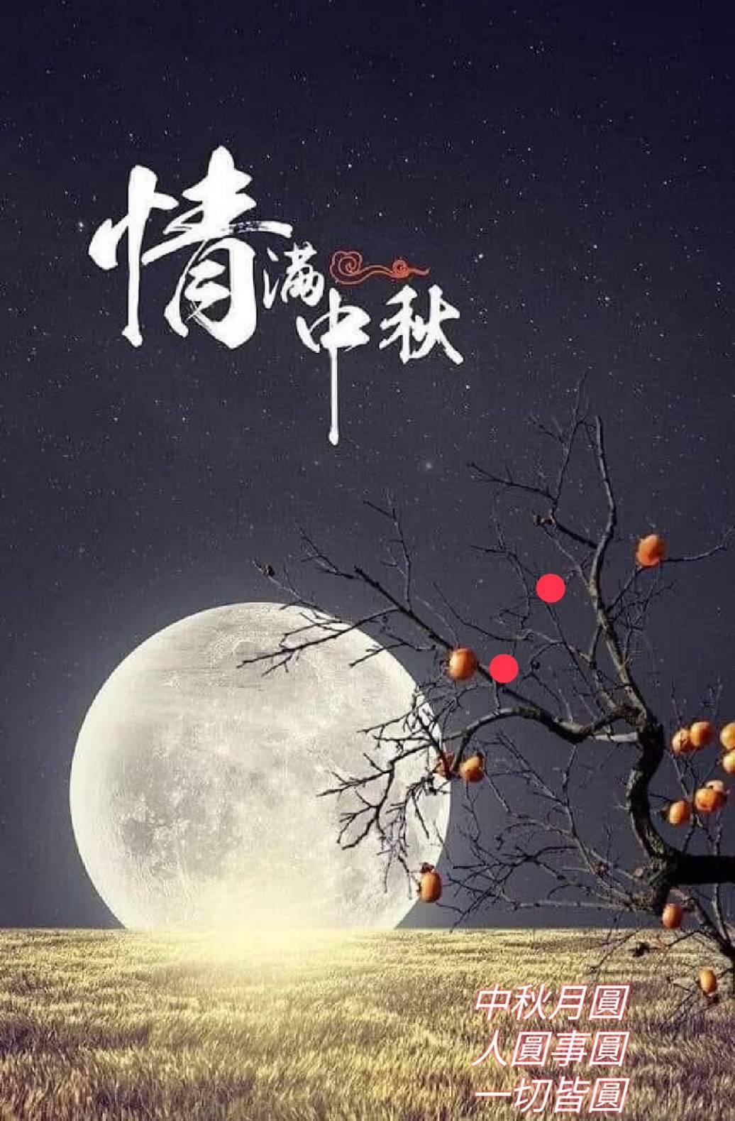 十五夜お月さん_d0079830_15283801.jpg