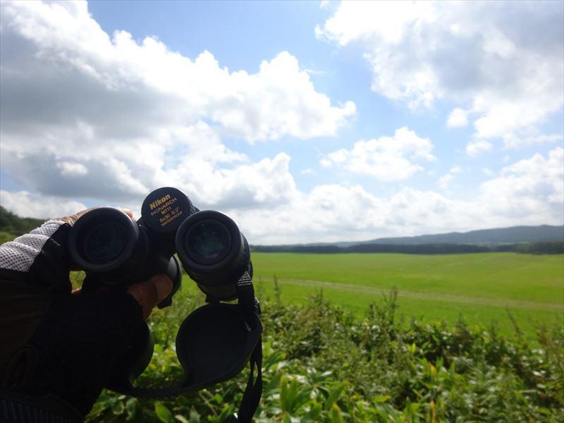 2021北海道6輪車中泊旅10日目(釧路湿原サイクリングと丹頂鶴観察)_e0201281_05284382.jpg