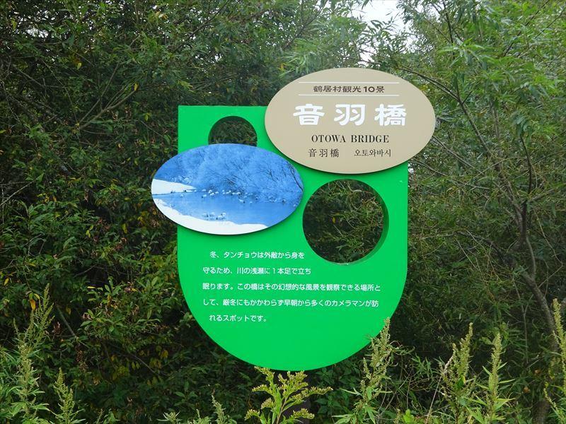 2021北海道6輪車中泊旅10日目(釧路湿原サイクリングと丹頂鶴観察)_e0201281_06304171.jpg