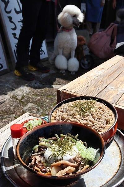 妻籠宿でおいしいお蕎麦♪_b0111376_15205265.jpg