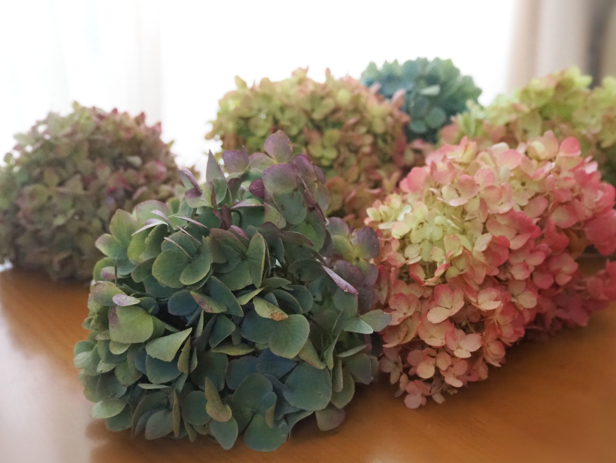 秋色紫陽花 - Quilt Mary's