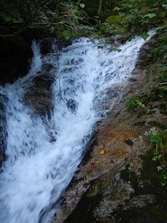 不動山想定沢登り…貝月谷_c0359615_08522637.jpg