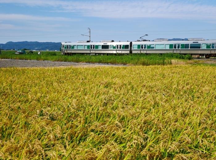 秋の田園風景  2021-09-27 00:00_b0093754_23131362.jpg