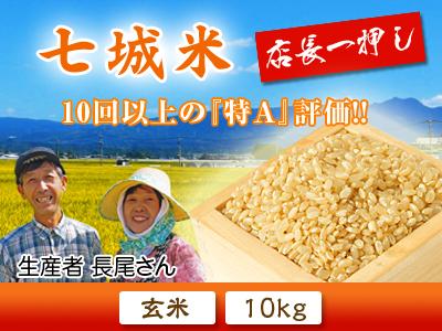 七城米 長尾農園 令和3年も美しすぎる田んぼで稲穂が頭を垂れ始めました!稲刈りは10月中旬です! _a0254656_18125767.jpg