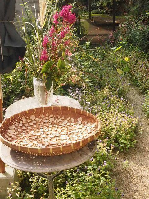 生姜蜂蜜と庭とフル―ツサンド♪_e0406439_10161114.jpg