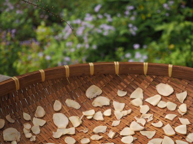 生姜蜂蜜と庭とフル―ツサンド♪_e0406439_10175616.jpg