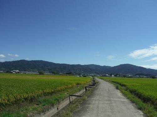 山の辺の道 のんびりポタリング (2021年9月)_b0332867_21443741.jpg