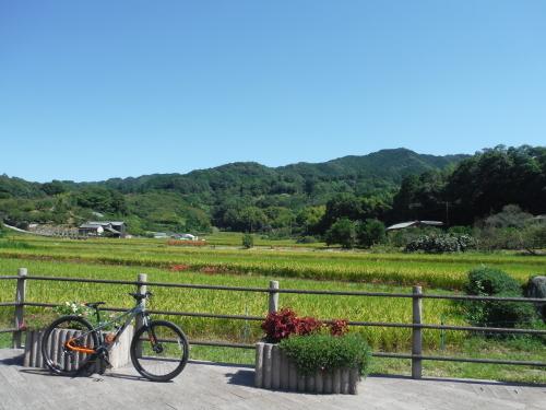 山の辺の道 のんびりポタリング (2021年9月)_b0332867_22011551.jpg