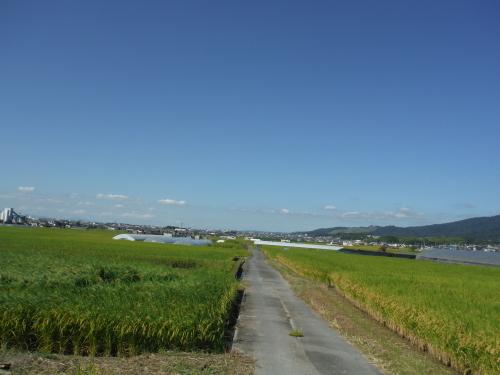 山の辺の道 のんびりポタリング (2021年9月)_b0332867_22092302.jpg