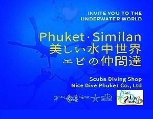 美しい水中世界【エビ】_f0144385_15001360.jpg
