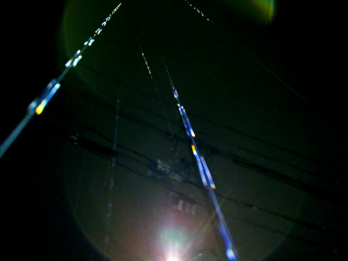 台風14号のエネルギーはこちらではあまり強くなかったようです_c0331825_09441374.jpg