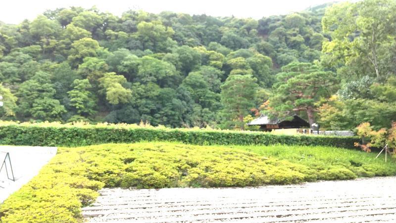 #やっぱりくまさん、スタート! and  #嵯峨嵐山文華館 と #福田美術館 行って思ったこと!_f0129557_14511558.jpg