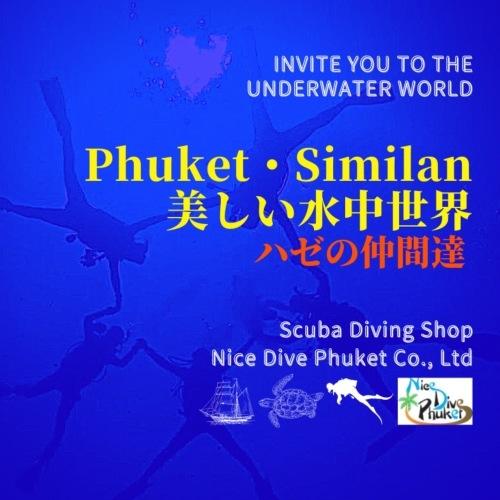美しい水中世界【ハゼ】_f0144385_15540897.jpg