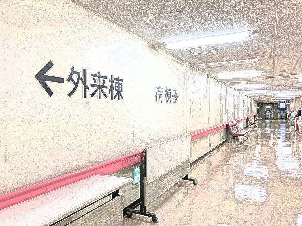 信州大学医学部附属病院の廊下をお花畑にするプロジェクトⅨ 終わりました_d0265224_20230733.jpg