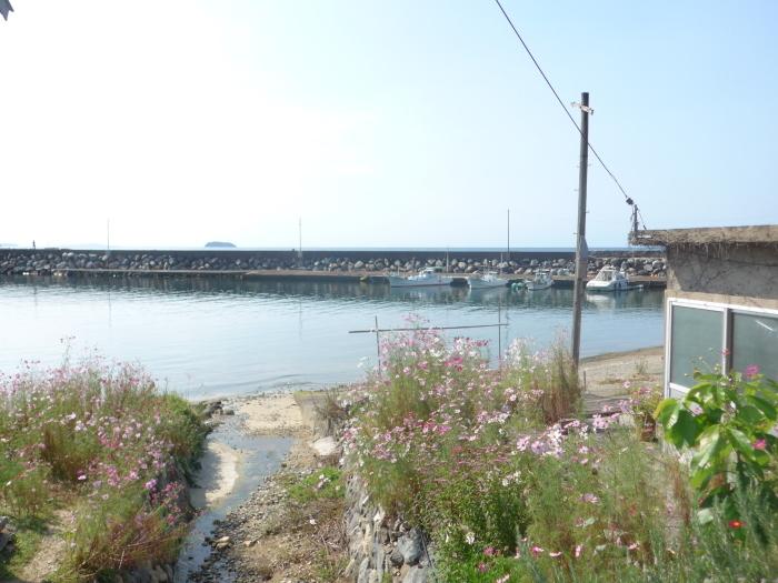 漁村の秋_d0159062_14113111.jpg