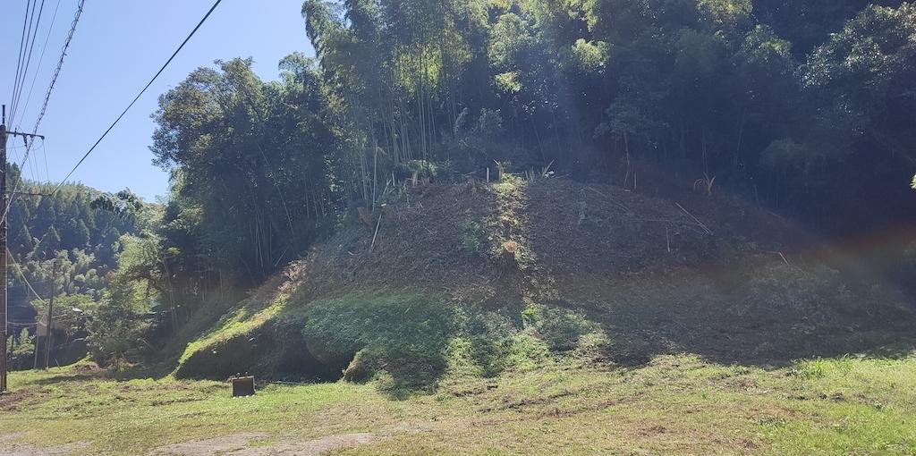 山の整備_a0103666_22071184.jpg