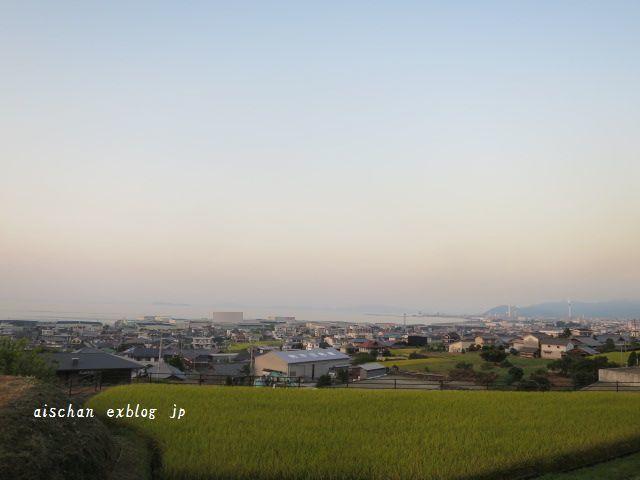 栗の季節と秋のお散歩♪_e0406439_12194537.jpg