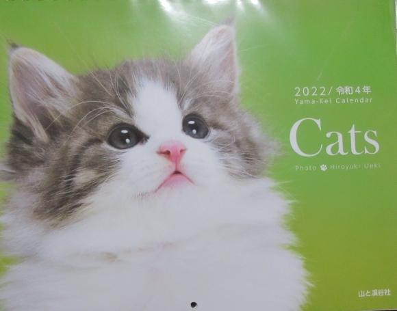 猫あるある&猫カレンダー_d0009101_19332931.jpg