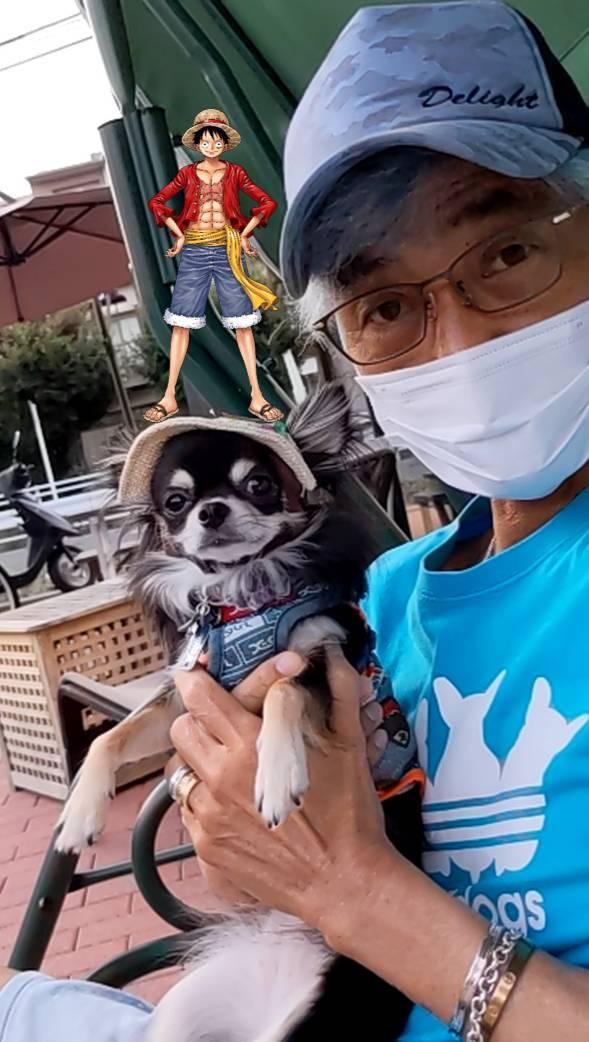 熊本城に立つルフィ_a0163623_00470431.jpg
