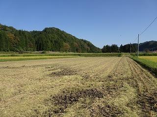 稲刈り終える_d0122374_09052956.jpg