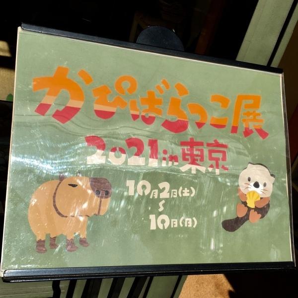かぴばらっこ展2021in東京 始まってます!_d0123492_22130477.jpeg