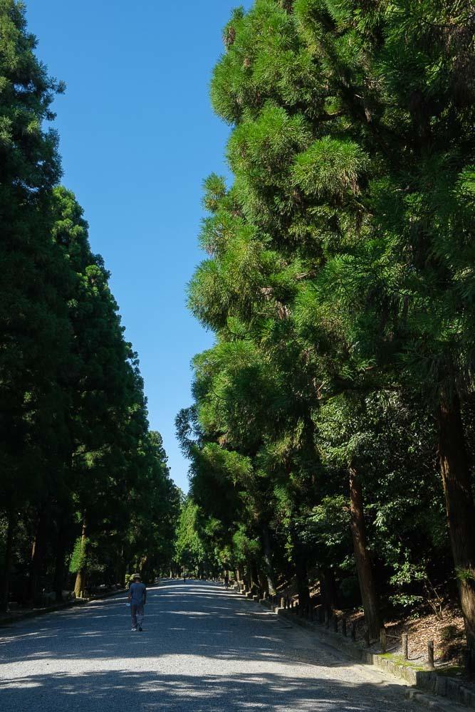 桃山御陵へぶらり…_b0325840_22111092.jpg