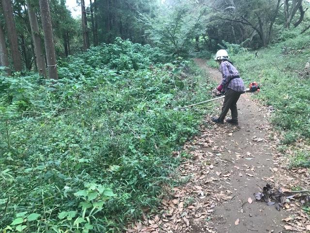 エゴノキの苗木植樹場所確保10・7六国見山手入れ(上)_c0014967_10193776.jpg