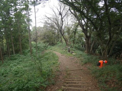 エゴノキの苗木植樹場所確保10・7六国見山手入れ(上)_c0014967_10202375.jpg