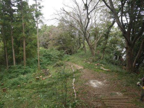 エゴノキの苗木植樹場所確保10・7六国見山手入れ(上)_c0014967_10204549.jpg