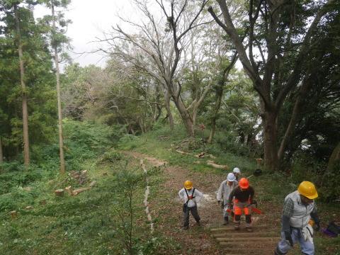 エゴノキの苗木植樹場所確保10・7六国見山手入れ(上)_c0014967_10213921.jpg