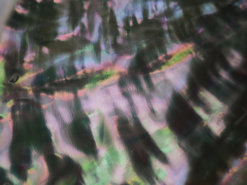 海のオーロラ_d0052327_00311924.jpg