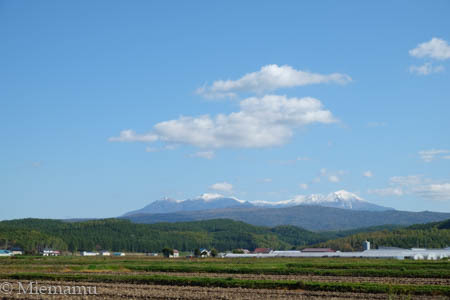 冠雪の大雪連峰~10月の東川_d0340565_20233287.jpg