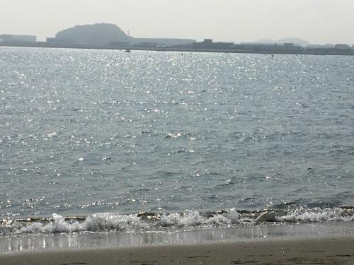 海の公園に行ってきた_b0228416_09040344.jpg