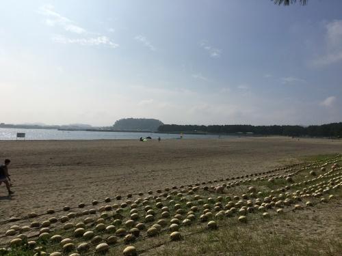 海の公園に行ってきた_b0228416_09093216.jpg