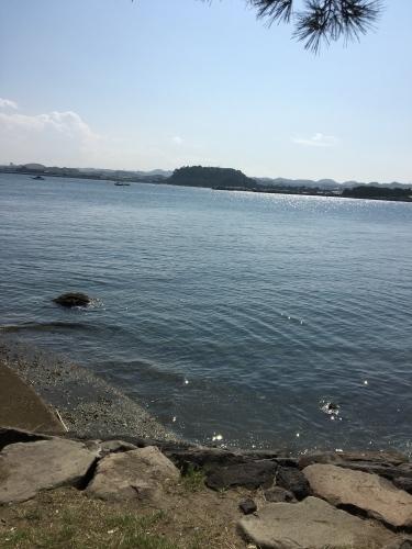海の公園に行ってきた_b0228416_09105782.jpg
