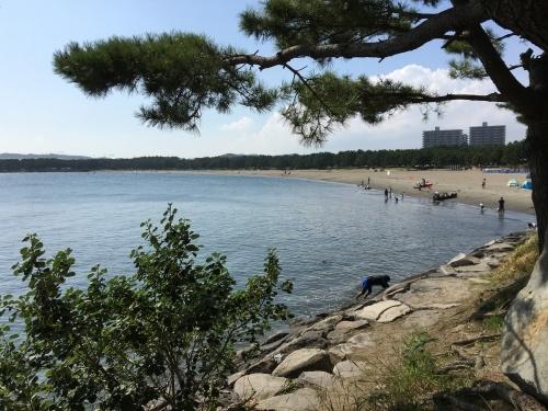 海の公園に行ってきた_b0228416_09110365.jpg