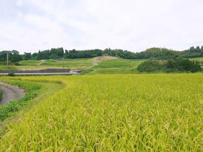 菊池水源棚田米 令和3年度の稲刈り終了!まもなく新米の販売開始!水にこだわる匠のお米を数量限定販売!_a0254656_17295733.jpg