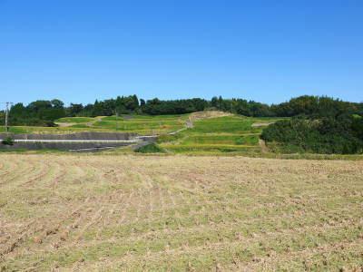 菊池水源棚田米 令和3年度の稲刈り終了!まもなく新米の販売開始!水にこだわる匠のお米を数量限定販売!_a0254656_18150688.jpg