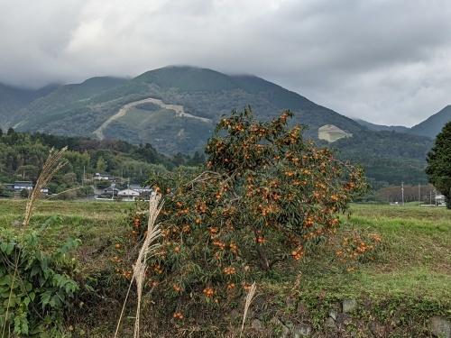基地撤去❢ 日本原演習場、三軒屋弾薬庫_e0246120_20234022.jpg