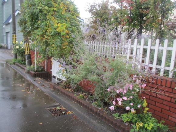 飾ったお花と煮て置いたお林檎で作ったアップルパイ_a0279743_19175117.jpg