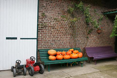かぼちゃとゴーフル_f0038600_20524960.jpg