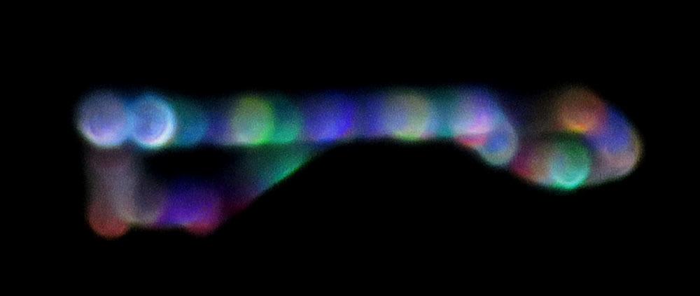 もうすぐ冬の星座になりますね_c0331825_17102977.jpg