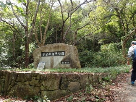 加西アルプス(笠松山)_c0218841_14145488.jpg