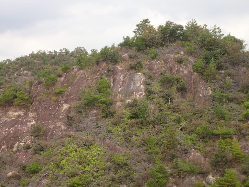加西アルプス(笠松山)_c0218841_14171161.jpg