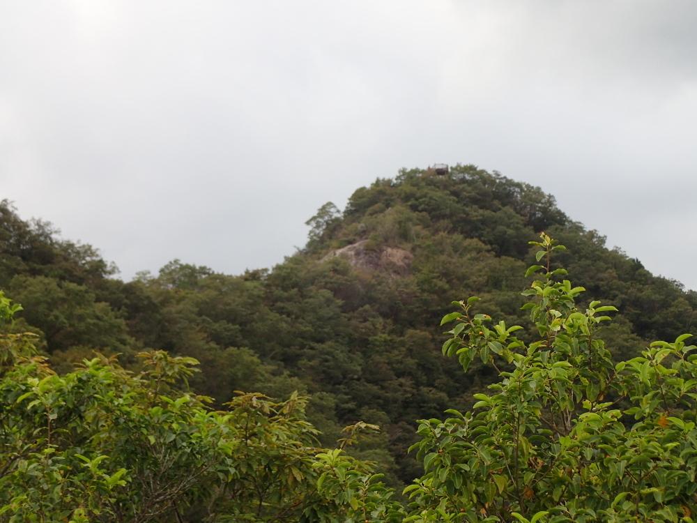 加西アルプス(笠松山)_c0218841_14182666.jpg