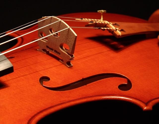 新作ヴァイオリン 動画と写真でご紹介します。_d0047461_14374464.jpg