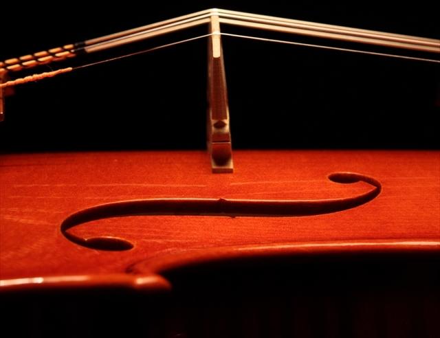 新作ヴァイオリン 動画と写真でご紹介します。_d0047461_14374468.jpg